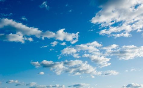 Government adopts The Cloud