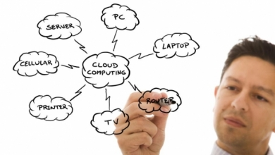 Software Developers Eye Cloud Distribution, SaaS