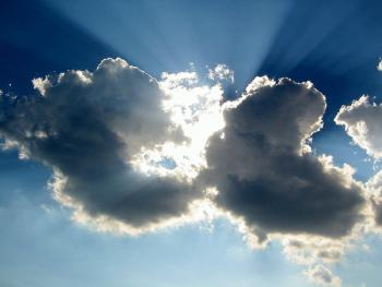 More Businesses Looking to Cloud Accounting Software
