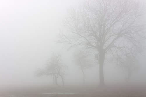 Fog Computing Is A New Concept Of Data Distribution