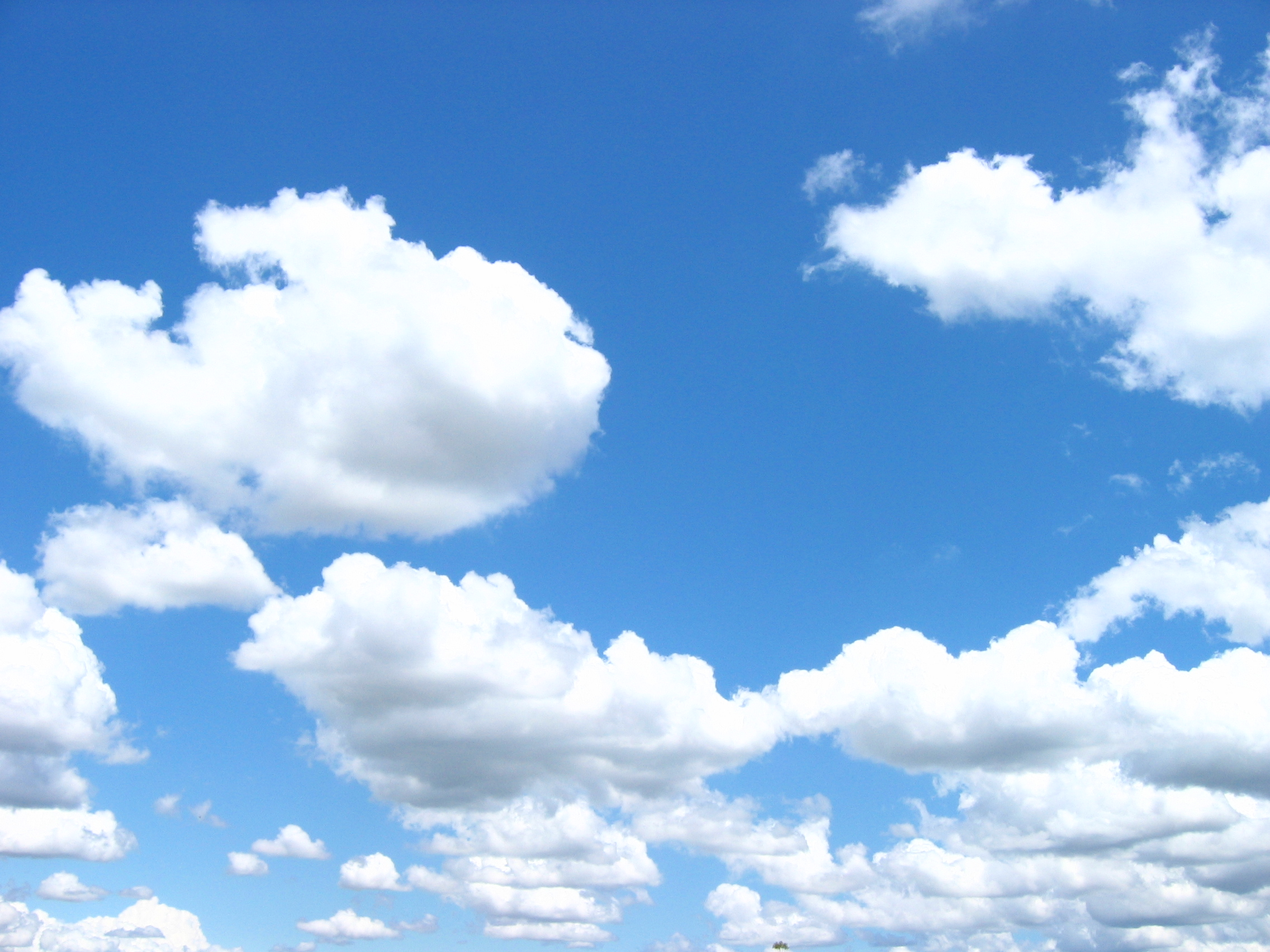 SCMSP Expands Cloud Computing Capabilities Meeting Market Demands